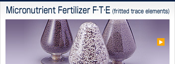 Micronutrient Fertilizer (F∙T∙E)